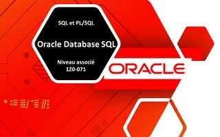Pratique pour l'examen | Oracle Database SQL 1Z0-071