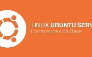 Les Commandes de Base de Linux Ubuntu Server Linux